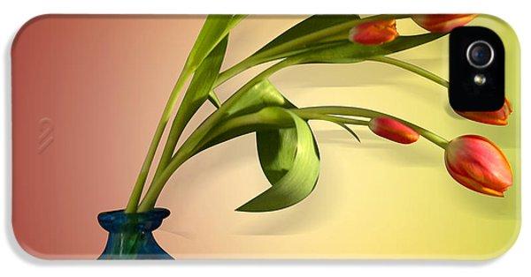 Tulips 5 IPhone 5 Case by Mark Ashkenazi