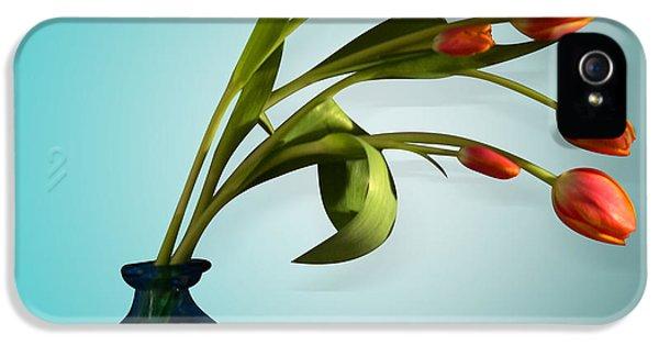Tulips 6 IPhone 5 Case by Mark Ashkenazi