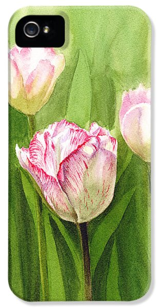 Tulips In The Fog IPhone 5 Case