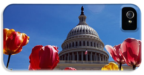 Tulips With A Government Building IPhone 5 Case by Panoramic Images