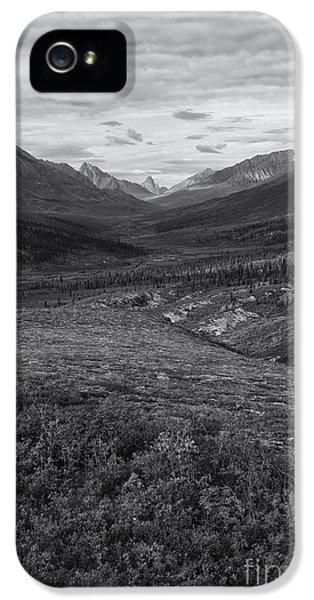 Tundra Valley IPhone 5 Case by Priska Wettstein