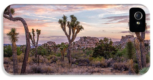 Twilight Comes To Joshua Tree IPhone 5 Case