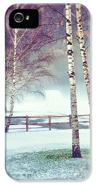 Two Birches IPhone 5 Case by Silvia Ganora