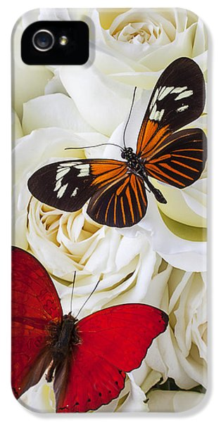 Two Butterflies On White Roses IPhone 5 Case by Garry Gay