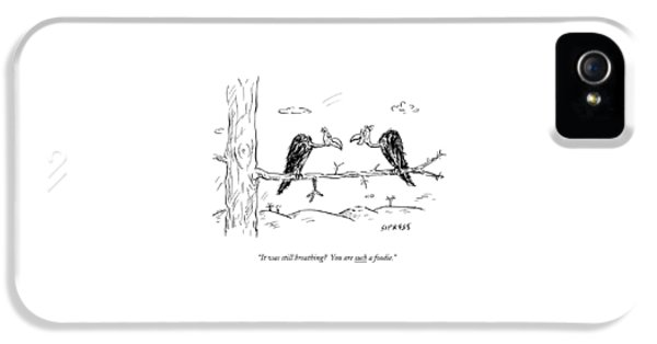 Two Buzzards Sit And Talk On A Branch IPhone 5 Case