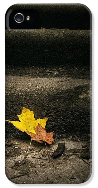 Two Leaves On A Staircase IPhone 5 Case by Scott Norris