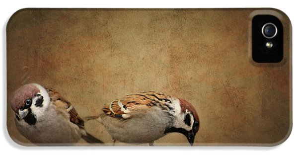Two Sparrows IPhone 5 Case by Heike Hultsch
