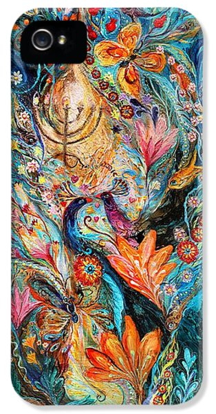 Under The Light Of Menorah IPhone 5 Case by Elena Kotliarker