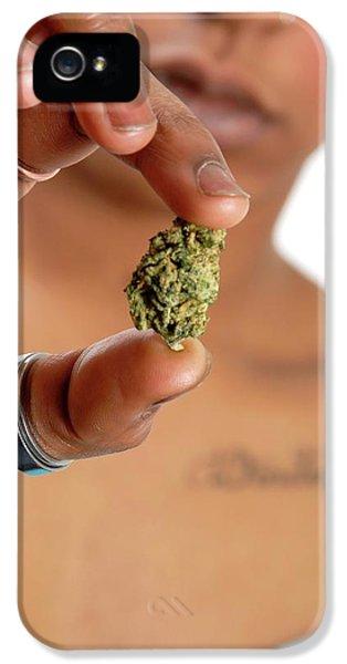 Using Cannabis IPhone 5 Case by Aj Photo
