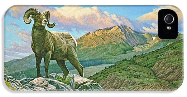 Vantage Point - Bighorn IPhone 5 Case by Paul Krapf