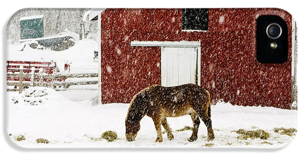 Vermont Christmas Eve Snowstorm IPhone 5 Case by Edward Fielding