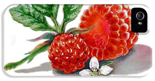 Artz Vitamins A Very Happy Raspberry IPhone 5 / 5s Case by Irina Sztukowski