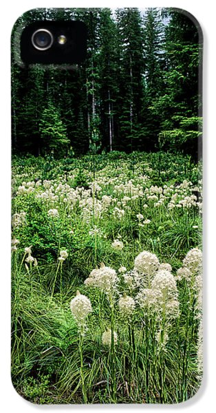 View Of Bear Grass Xerophyllum Tenax IPhone 5 Case