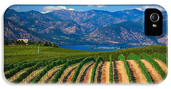 Vineyard In The Mountains IPhone 5 Case by Inge Johnsson