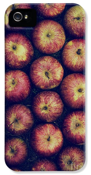 Vintage Apples IPhone 5 Case by Tim Gainey