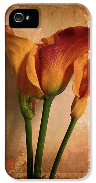 Lily iPhone 5 Case - Vintage Calla Lily by Jessica Jenney