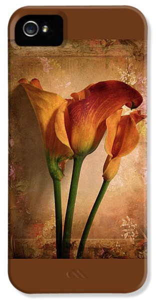 Vintage Calla Lily IPhone 5 Case