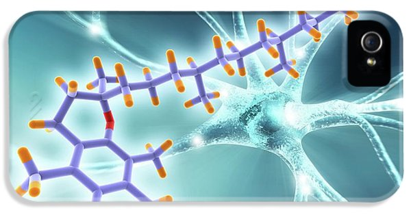 Vitamin E Molecule And Nerve Cell IPhone 5 Case by Alfred Pasieka