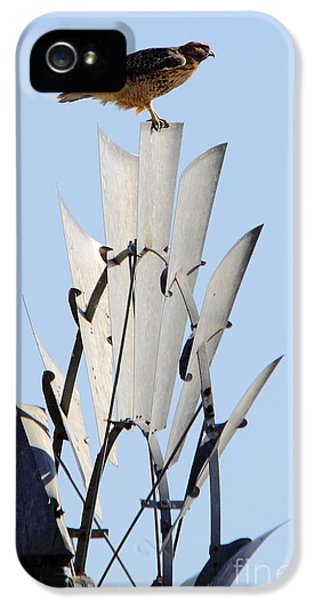 Waiting For The Wind IPhone 5 Case by Robert Frederick