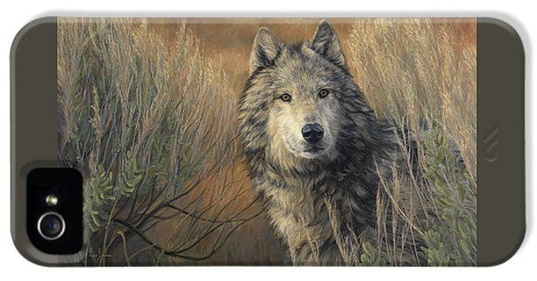 Watchful IPhone 5 Case by Lucie Bilodeau