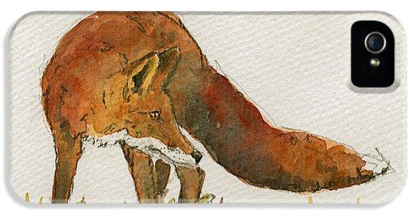 Orange iPhone 5 Case - Watching Red Fox by Juan  Bosco