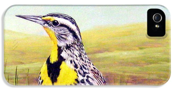 Western Meadowlark IPhone 5 Case by Tom Chapman