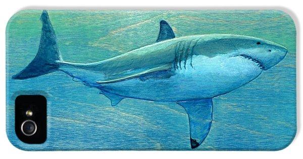 Hammerhead Shark iPhone 5 Case - What Lurks Below by Nathan Ledyard
