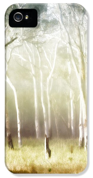 iPhone 5 Case - Whisper The Trees by Holly Kempe