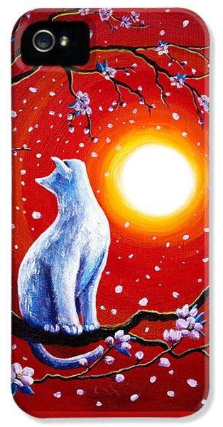 White Cat In Bright Sunset IPhone 5 Case