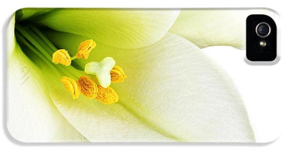 Stamens iPhone 5 Case - White Lilly Macro by Johan Swanepoel
