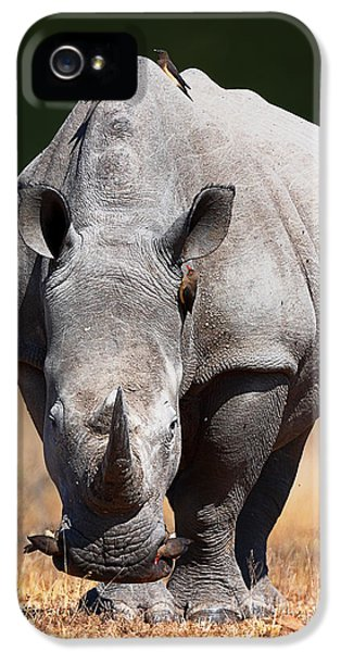 White Rhinoceros  Front View IPhone 5 Case by Johan Swanepoel