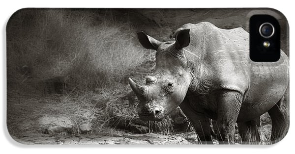 White Rhinoceros IPhone 5 Case by Johan Swanepoel