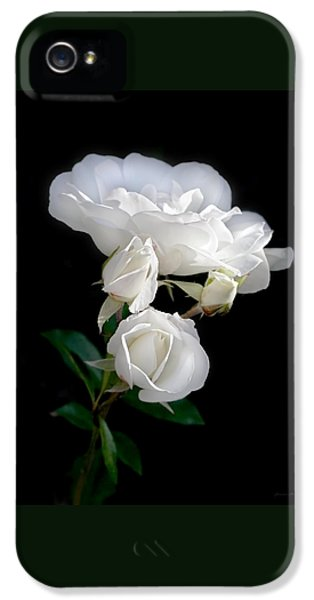 White Roses In The Moonlight IPhone 5 Case by Jennie Marie Schell