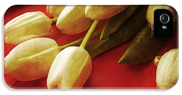 White Tulips Over Red IPhone 5 Case by Edward Fielding
