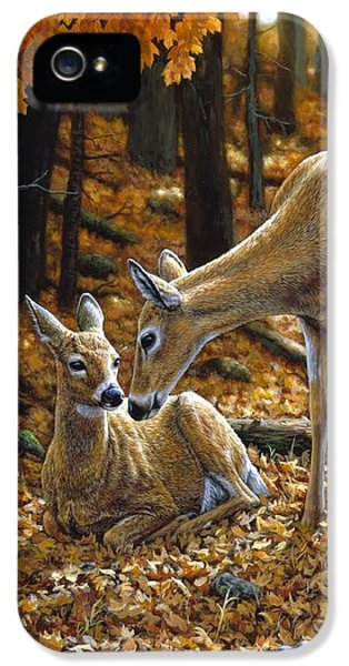 Whitetail Deer - Autumn Innocence 2 IPhone 5 Case by Crista Forest