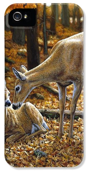 Whitetail Deer - Autumn Innocence 2 IPhone 5 / 5s Case by Crista Forest
