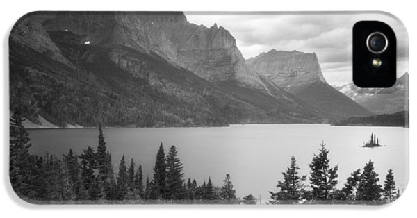 Wild Goose Chase IPhone 5 Case by Peter Coskun