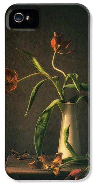 Tulip iPhone 5 Case - Wilted Tulips by Monique Van Velzen