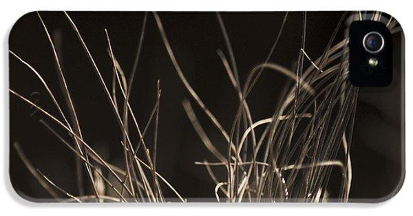 Winter Grass 2 IPhone 5 Case by Yulia Kazansky