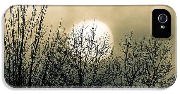 Moon iPhone 5 Case - Winter Into Spring by Bob Orsillo