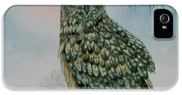 Winter Owl IPhone 5 Case by Ditz