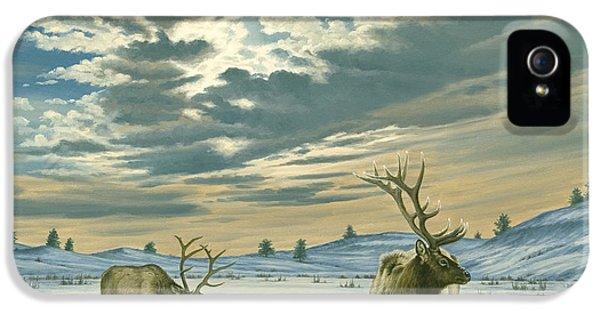 Bull iPhone 5 Case - Winter Sky-elk   by Paul Krapf