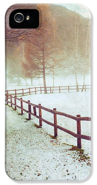 Winter Tree With Fence IPhone 5 Case by Silvia Ganora