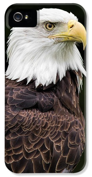 With Dignity IPhone 5 Case by Dale Kincaid