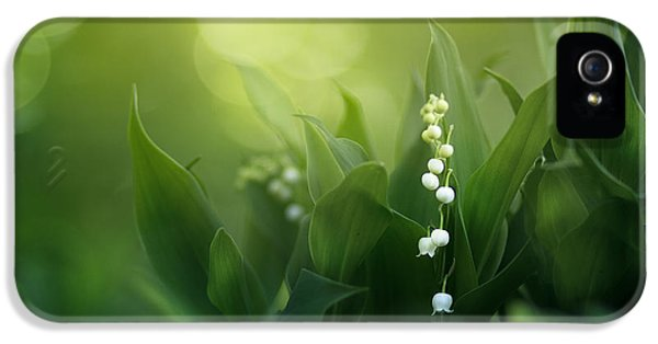 Lily iPhone 5 Case - Wonders Of Spring Forest by Magda  Bognar
