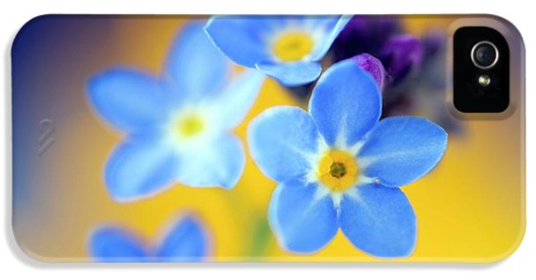 Wood Forget-me-not (mysotis Sylvatica) IPhone 5 Case by Alex Hyde