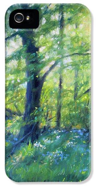 Woodland Sunset IPhone 5 Case by Bonnie Mason