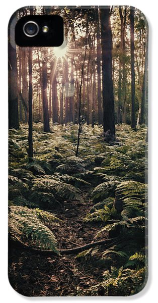 Woodland Trees IPhone 5 Case