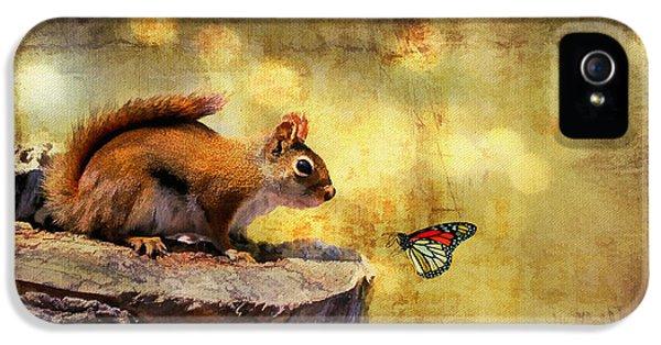 Squirrel iPhone 5 Case - Woodland Wonder by Lois Bryan