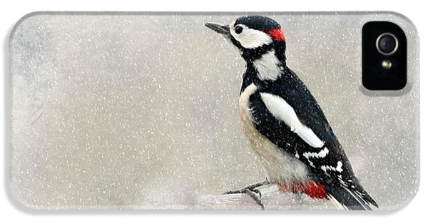 Woodpecker IPhone 5 / 5s Case by Heike Hultsch